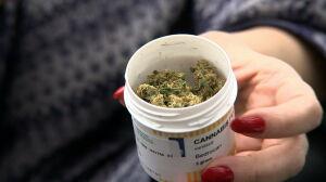 """Lecznicza marihuana w aptekach? """"Zabiegamy o to"""""""